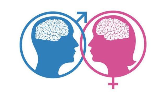 男女の脳の違い