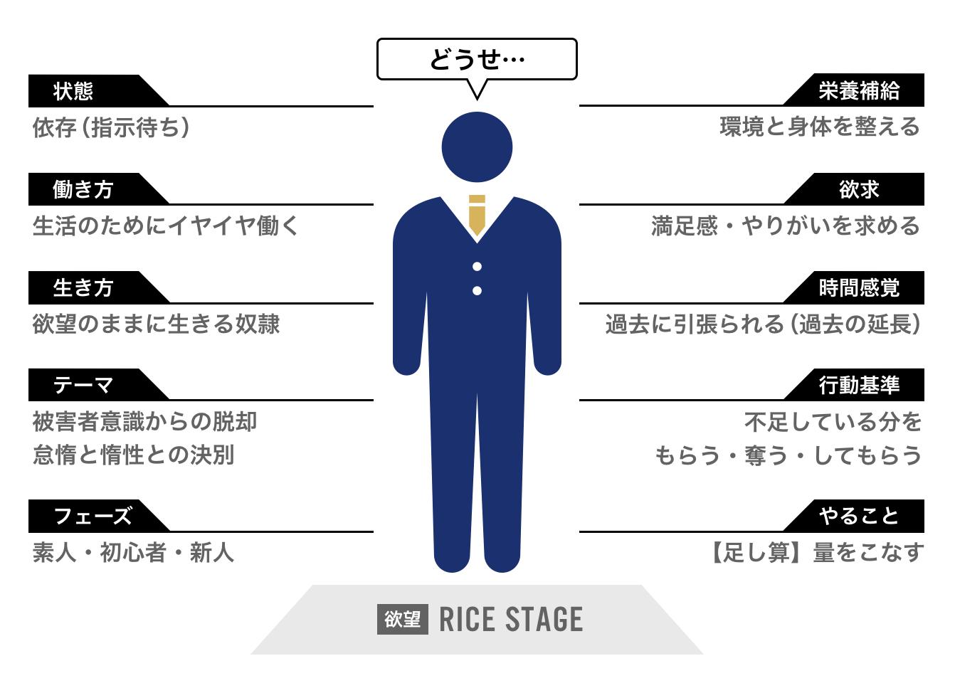 人生の4つのステージ理論 ライスステージ